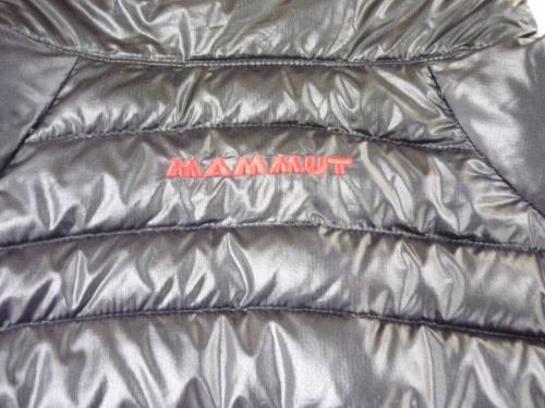 ダウンジャケットのフリースジャケット