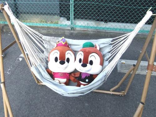 キャンプ用品のアウトドア用品 買取 東大阪