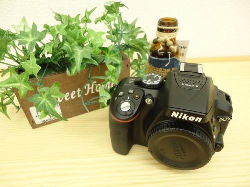 デジタル一眼レフカメラのNIKON(ニコン)