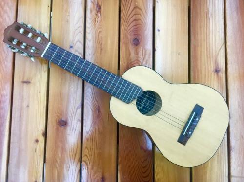 ギターのギタレレ