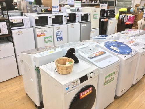 中古洗濯機 松原の関西